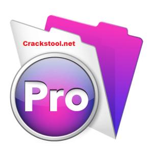 FileMaker Pro 19.3.1.43 Crack + Torrent (Mac) Free Download